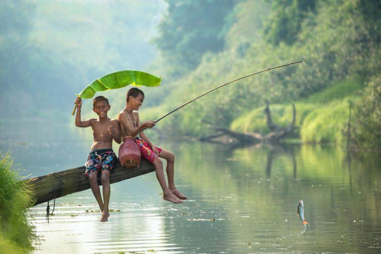 Trong giấc chiêm bao nằm mơ thấy câu cá
