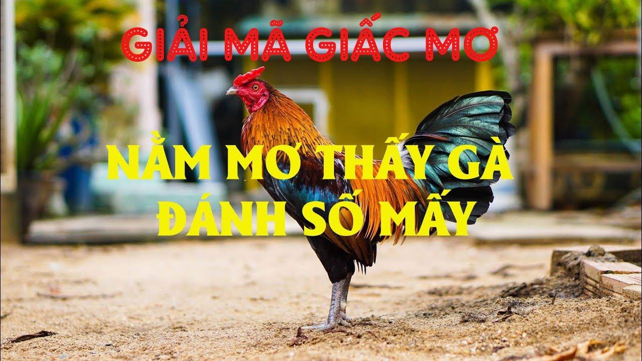 Năm mơ thấy ăn thịt gà đánh con gì?